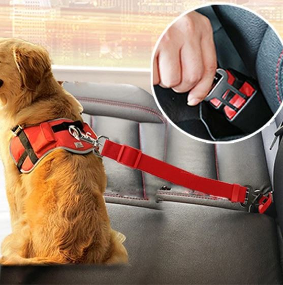 Adjustable Car seat belt for your dog 🦮 Protect your pet in the car | Cintura per cani