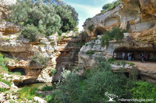 Escursione nella meravigliosa gravina di Riggio a Grottaglie