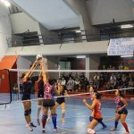 prato volley viva