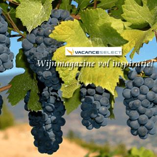 italiaans wijnmagazine