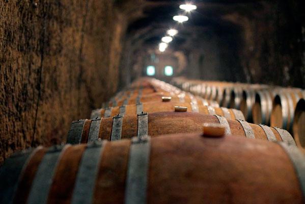 Wijn Rondreis Umbrië