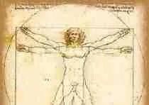 Vetruvian Man by Leonardo da Vinci