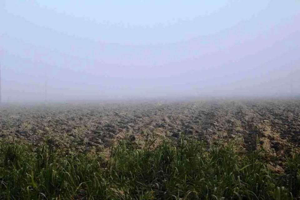 Late afternoon fog outside our Ferrara farmhouse.
