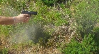 Tar Liguria, legittima difesa: l'uso di un'arma detenuta legittimamente è consentita per difendere i propri beni