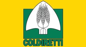Indagine Coldiretti/IXE' sul piano di governo degli italiani