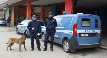 """Operazione antidroga """"Drugs in the city"""": 19 misure restrittive"""