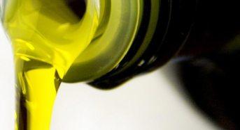 """Settore Olivicolo: il 9 settembre a Chiaramonte Gulfi il workshop """"L'olio di Oliva – oro verde del Mediterraneo"""""""