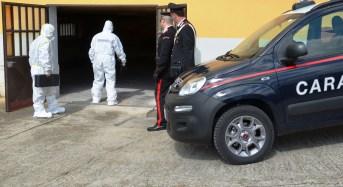 """Tre fratelli rumeni fermati dai Carabinieri per il """"pestaggio di Pasquetta"""""""