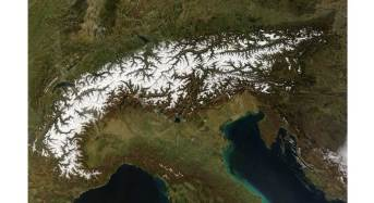 Una vipera sconosciuta scoperta nelle montagne delle Alpi biellesi: è già in pericolo d'estinzione