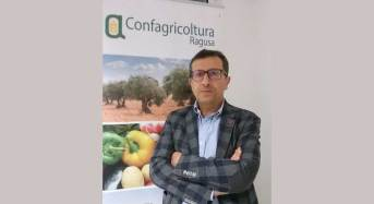 Danni maltempo a Ragusa e provincia, Confagricoltura chiede lo stato di calamità e sollecita immediati interventi da parte della Regione