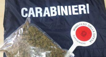 Fermato al quartiere Gesù con mezzo kg di droga, cerca di scappare: arrestato dai Carabinieri