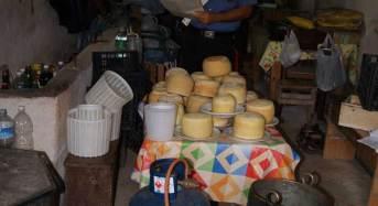 100 chili di prodotti caseari sequestrati: Denunciato 67enne