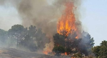 Emergenza Incendi: La UIL PA Vigili del Fuoco si rivolge al Governo per chiedere una revisione immediata della normativa in materia di incendi boschivi
