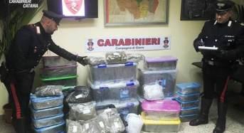 Sequestrati quasi 50 Kg di droga per un valore di oltre 50mila euro nel garage di un 43enne: Arrestato