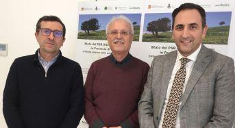 Stato del PSR Sicilia 2014/2020 in provincia di Ragusa: Convegno venerdì 16 FEB a Vittoria