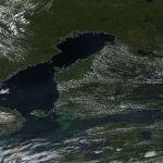 Itämeren vihreä myrkky näkyy avaruuteen asti.