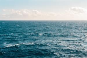 Itämeren rehevöityminen kuriin – 10 000 euroa ja Itämeren ympäristöystävällisimmän viljelijän titteli jaossa kilpailussa
