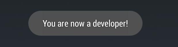 Когда Параметры разработчика разблокированы, вы должны увидеть что-то вроде этого.