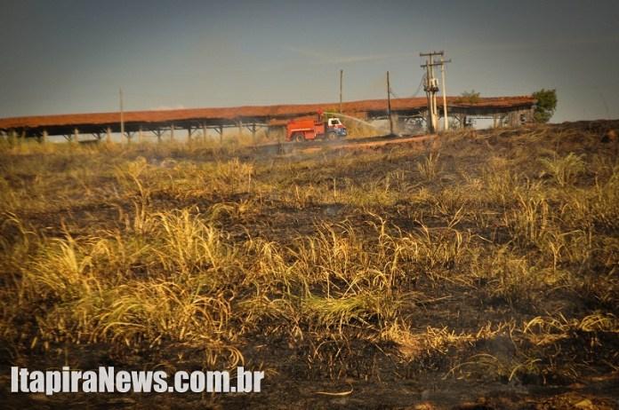 Grande parte do terreno foi atingida pelo fogo