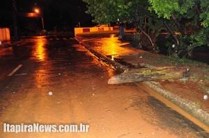 Água baixou rápido, mas deixou muita lama e até tronco de árvore