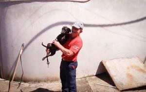Agente Santos após resgate do cão, que passa bem (Divulgação/UIPA)