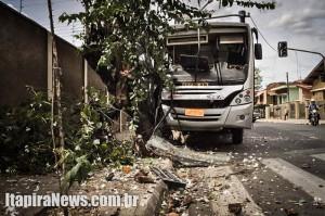 Coletivo atingiu semáforo e árvore na Nova Itapira