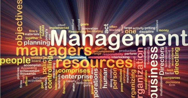 cio-leadership-career