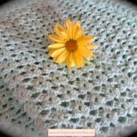 How to Crochet the Lacy Shell Stitch