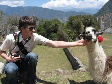 Llama getting a chin rub.
