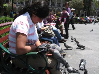 A woman feeds the pigeons in Arequipa, Peru.