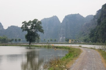 A road surrounded by water in Tam Coc, Vietnam