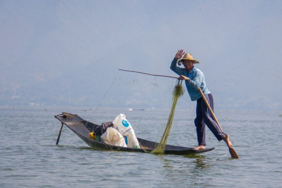 Fisherman posing while putting out a net onInle Lake, Myanmar
