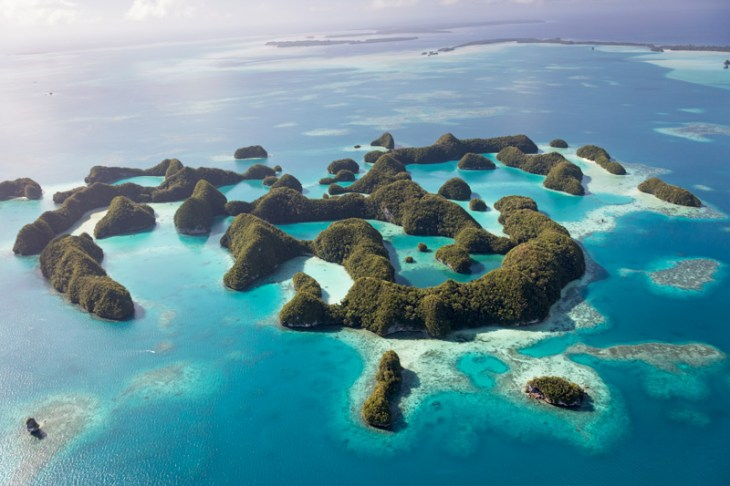 Image result for palau photography