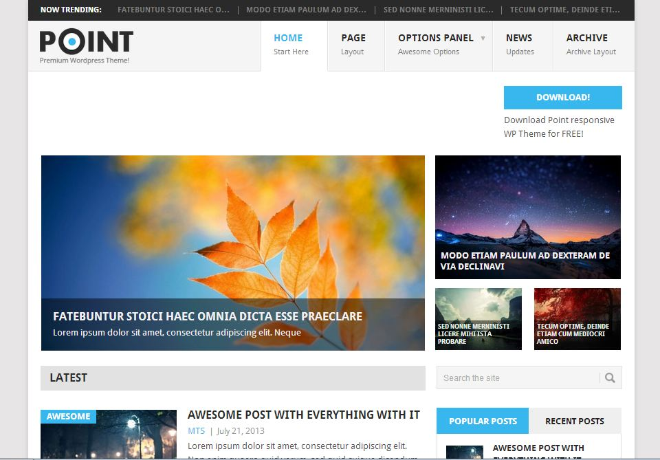 free wordpress themes point
