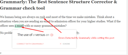 Grammarly demo the best sentece structure corrector grammar checker
