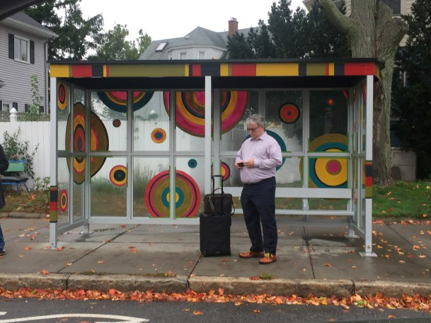 Local artists teamed up with the Arlington BRT project to create beautiful and unique art installations to bus shelters
