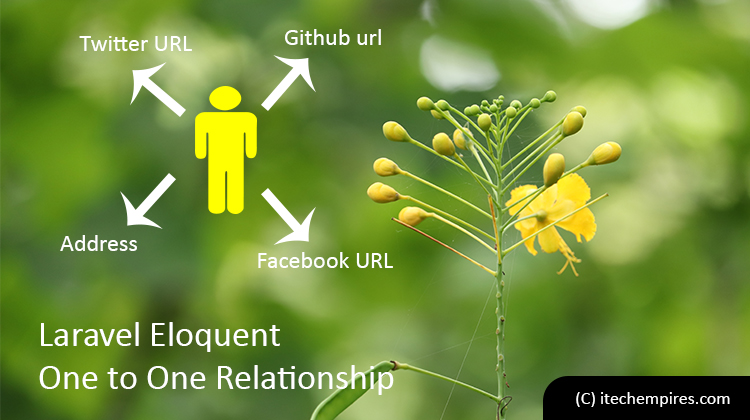 Laravel Eloquent One to One Relationship
