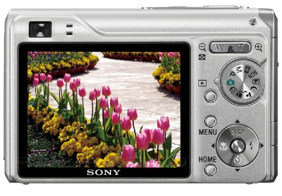Sony DSC-W200 12.1MP Digital Camera