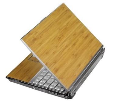 Asus U6V-B1-Bamboo Ultraportable Notebook