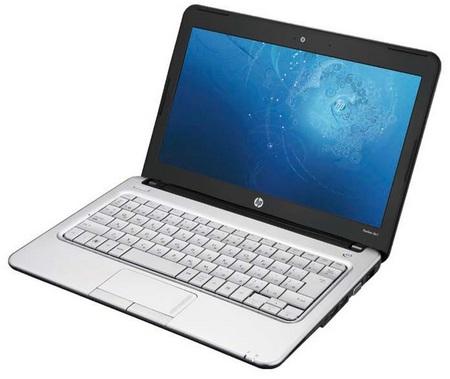 HP Pavilion dm1 CULV Notebook