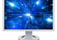 Eizo FlexScan S2243W-HX LCD Display