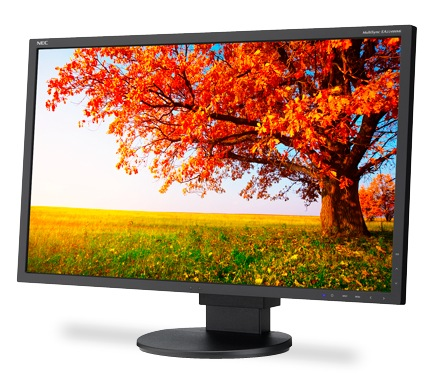 NEC MultiSync EA224WMi IPS Enterprise Desktop Monitor