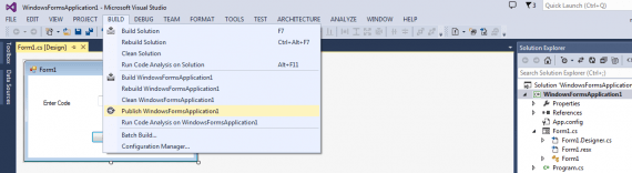 Visual Studio publish
