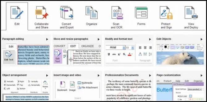 PDF converter editor creator features