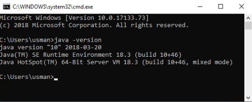 Java 10 version check