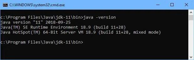 Java 11 version check