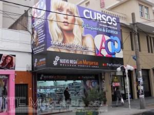 Locales Perfumerías Las Margaritas – 2010