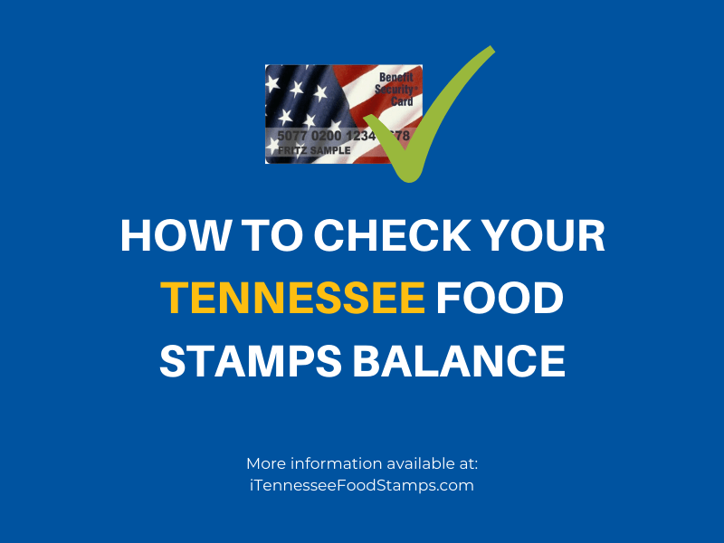 How to Check your Tennessee Food Stamps Balance