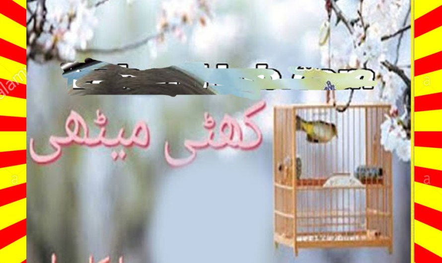 Khatti Meethi Urdu Novel By Hina Kamran Episode 14