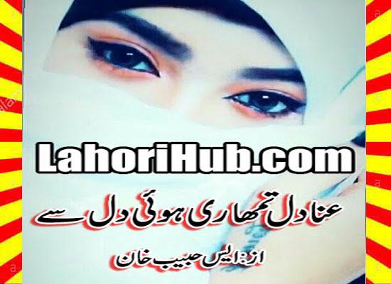 Anadil Tumhari Hui Dil Se Urdu Novel By S Habib Khan